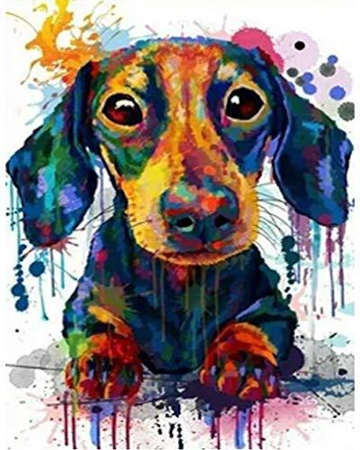 PPTRTYQ DIY Malen nach Zahlen für Erwachsene Anfänger Kinder, Farbe Dackel Hund Tier Aquarell 16x20 Zoll Leinen Leinwand Acryl Anzahl Malerei Geschenke Schlafzimmer Wohnzimmer Wohnkultur
