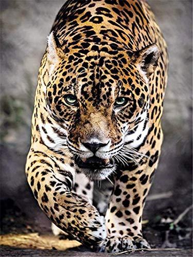 XCJX 30 * 40cm Frameless 5D Diamond Painting Leopard Animal Handicraft Crystal Diamond Diamond Painting Cross Stitch Kit