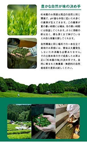 杉本園「紐付き玄米茶ティーバッグ」60g