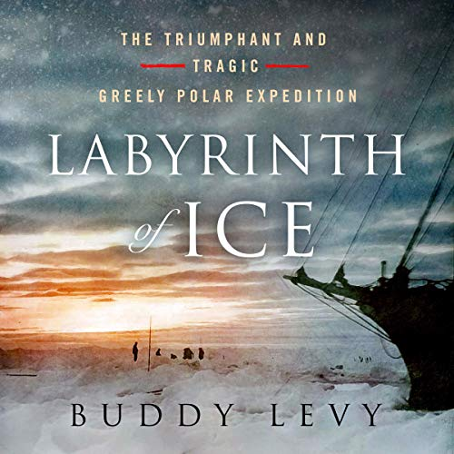 Labyrinth of Ice  By  cover art