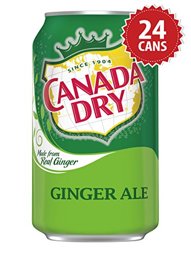 Canada Dry Ginger Ale - US Import! (24 Dosen x 355ml)