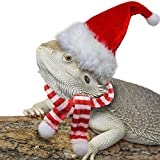 Bearded Dragon Santa Hat for Lizard with Scarf Christmas Costume Clothing Set Xmas Gift Clothes Outfit Great for Outdoor Halloween,Holiday,Party,Photos (Red White)