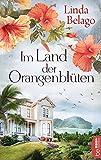 Im Land der Orangenblüten (Die Surinam-Saga - Ein Landschaftsroman 1)