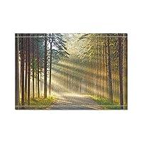 HiYash 森の中に日光が降り注ぐトイレの敷物敷物滑り止めの床の出入り口屋外の屋内玄関マット、60x40cmバスマット