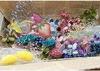 ハーバリウム キット 花材 フルーツ (おまけ付き)