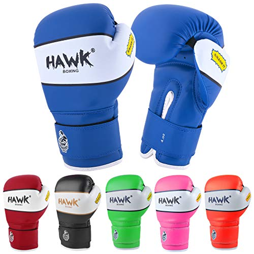 Hawk Sports Kids Boxing Gloves for Kids Children Youth Punching Bag Kickboxing Muay Thai Mitts MMA Training Sparring Gloves (Blue, 4 oz)