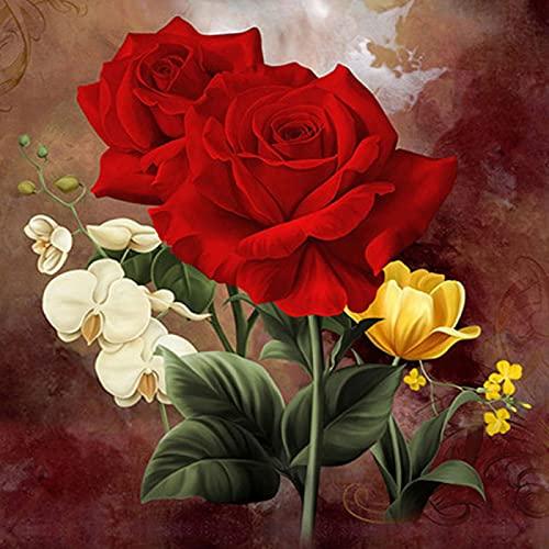 HAODGUO 5D DIY Cuadrado Completo/Redondo Diamante Pintura Rosas Rojas Bordado Punto de Cruz Diamantes de imitación Mosaico decoración del hogar