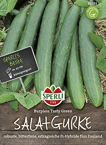 Gurkensamen - Gurke, Burpless Tasty Green F1 Hybride von Sperli-Samen