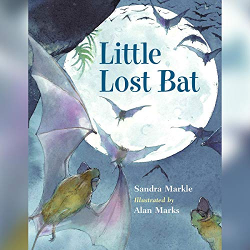 Little Lost Bat audiobook cover art