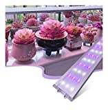 A-ZHP LED Crece Barras de Luces for Plantas de Interior de la Planta Crece la lámpara con Rojo/Azul del Espectro 60cm Crecimiento luz de Tira con la energía del Interruptor de Alambre A-