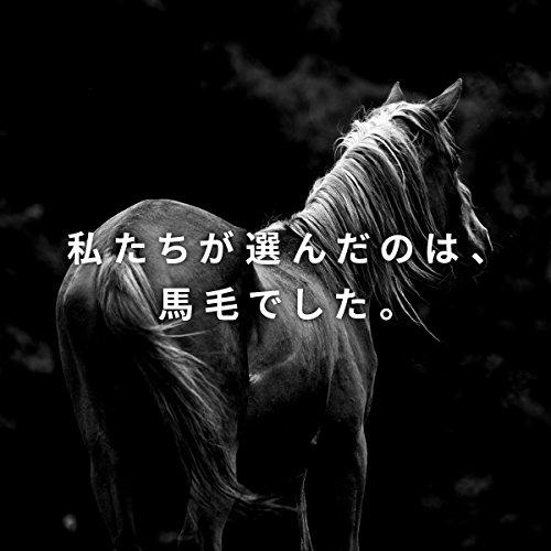 TAROWORKS(タロウワークス)『HORSEHAIRWHEELCLEANINGBRUSH』