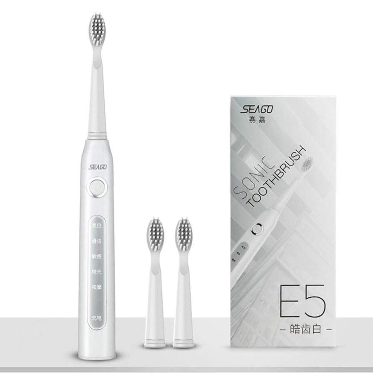 ムスタチオ無駄だ威するUsb充電式電動歯ブラシ大人の防水ディープクリーン歯ブラシ2交換ヘッド5クリーニングモード、ホワイト