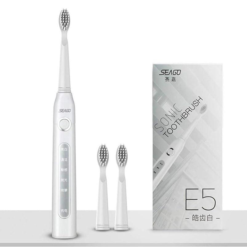 Usb充電式電動歯ブラシ大人の防水ディープクリーン歯ブラシ2交換ヘッド5クリーニングモード、ホワイト