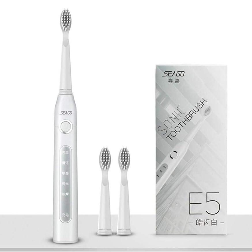 中央劇作家損なうUsb充電式電動歯ブラシ大人の防水ディープクリーン歯ブラシ2交換ヘッド5クリーニングモード、ホワイト