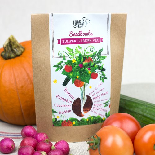 Espresso Mushroom Company Bumper Garden Veg Seedbomb to Grow Tomato/Pumpkin/Cucumber/Radish