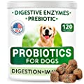 Dog Probiotics Chews - Gas, Diarrhea, Allergy, Constipation, Upset Stomach Relief, with Digestive Enzymes + Prebiotics - Chewable Fiber Supplement - Improve Digestion, Immunity - Made in USA - 120 Ct