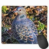 マウスパッド 目がオレンジ色の鳩 Mousepad ミニ 小さい おしゃれ 耐久性が良 滑り止めゴム底 表面 防水 コンピューターオフィス ゲーミング 25 x 30cm