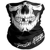 Skull Outdoor Motorcycle Face Mask By Indie Ridge - Ski Snowboard Mask Seamless Headwear
