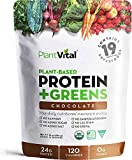 New! Plant Based Chocolate Protein Powder w 19 Superfoods, Veggies & Probiotics. Raw Cocoa, Kale, Beets, Spirulina & More! Vegan, Organic, Non-GMO, Gluten Free. 16oz
