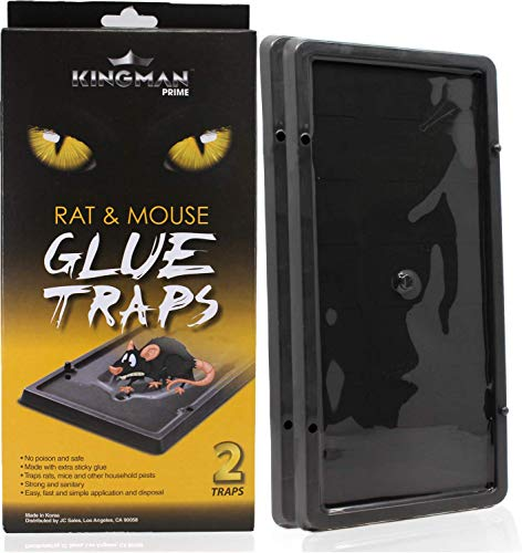 KINGMAN PRIME Mouse Trap Rat Trap Glue Trap/Board (Large Size) (5 Pack / 10 Traps) Rodent Trap Safe Easy Non-Toxic