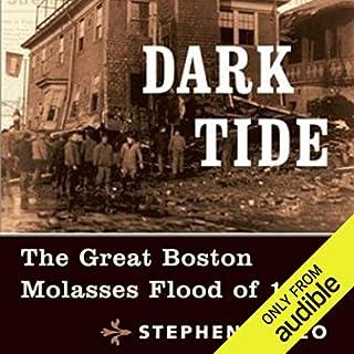 Dark Tide audiobook cover art