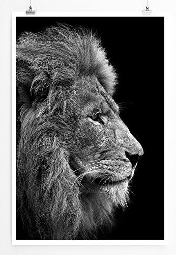 Sinus Art Kunst und Deko Poster - Tierfotografie – Mächtiger Löwenkopf- Fotodruck in gestochen scharfer Qualität