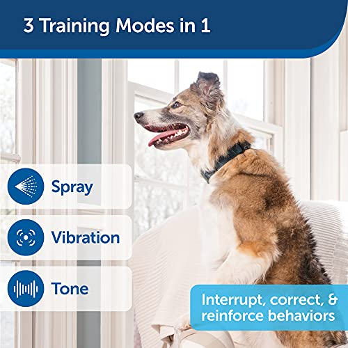 PetSafe PDT00-16395 PetSafe Remote Spray Trainer, Training Collar and Remote for Dogs 8 lb. and Up, Water Resistant with Citronella Spray