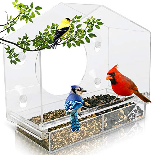 Wild Birds of Joy Bird House Window Bird Feeder with 4 Super Strong Suction Cups...
