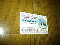猫 なめ猫 ネコ 免許証 舐め猫 カード 又吉 小さいカード お正月 着物姿 なめんなよの文字 売れてます コレクション