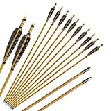 Huntingdoor 12 Pcs Turkey Feather Fletching Wooden Arrows Archery...
