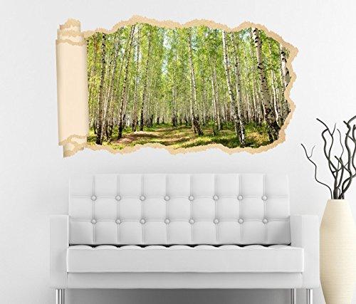 3D Wandtattoo Tapete Birkenwald Birke Wald Baum Landschaft Bäume Weg Durchbruch selbstklebend Wandbild Wandsticker Wohnzimmer Wand Aufkleber 11O1438, Wandbild Größe F:ca. 162cmx97cm