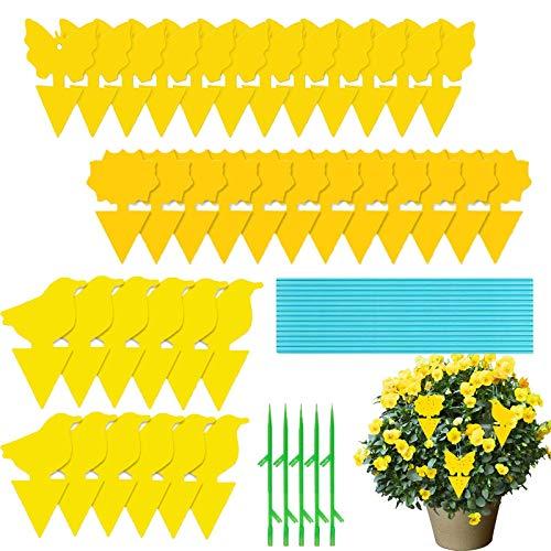 SunAurora 36 Piezas Trampas para Insectos Amarillos,Papeles Pegajosos Trampas de Moscas Doble Cara,Trampas Adhesivas para Proteger de Huertos y Plantas Ornamentales