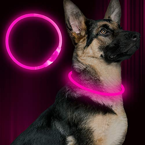 BSEEN LED Dog Collar, USB Rechargeable, Glowing pet Dog Collar for Night Safety, Fashion Light up Collar for Small Medium Large Dogs (Pink)