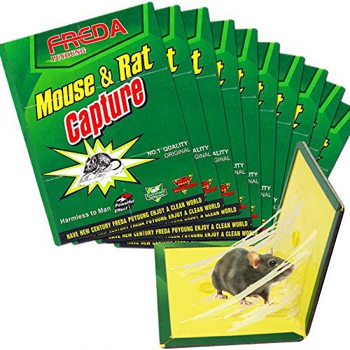 U-TOTE Trampa para Ratones Trampas para Ratas, Platos Adhesivos para Ratones, Pegamento...