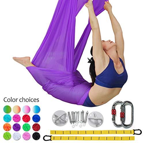 Premium Aerial Silks Equipment Aerial Yoga Hammock Set Aerial Silk Yoga Set Safe Deluxe Aerial Kit Antigravity yoga Swing (Purple)