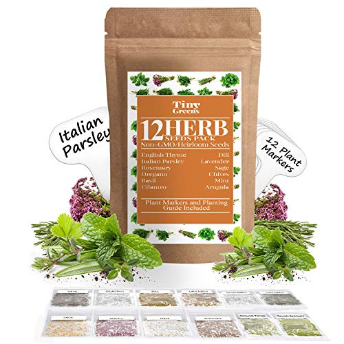 Herb Seeds Vault [12 Variety - 3600 Seeds]- Heirloom Non GMO - Herbs Seeds for Planting for Indoor and Outdoor | Herb Garden Seed Pack | Mint, Chives, Lavender, Cilantro, Parsley, Basil, Rosemary