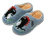 INMINPIN Boys Girls Cozy House Slippers Warm Plush Winter Cotton Slipper Kids Cute Dinosaur Indoor Shoes Non-Slip,Blue,1/2 Big Kid