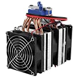 Electric Coolers Review and Comparison