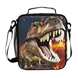 ZOEO Boys Dinosaur Lunch Box 3D Insulated Lunch Bag Prep Kids Cooler Blue Tote Freezable S...