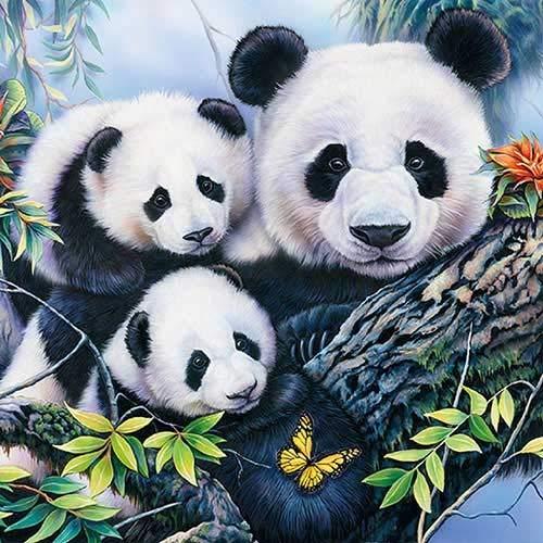 4 servilletas de papel para decoupage – 3 capas, 33 x 33 cm – Panda – Ambiente (4 servilletas individuales para manualidades y servilletas)