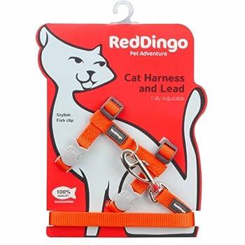 Red Dingo Basic Laisse/Harnais pour Chat Orange