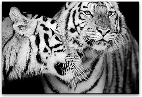 bestforhome canvas afbeelding twee tijgers aan knuffelig zwart wit canvas op houten frame 40 x 60 cm