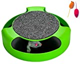 AroPaw Interactive Cat Toys Quality Best Interactive Kitten Catnip Toys Includes Play Mice (Single)