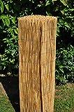 Schilfrohrzaun, Sichtschutzmatte, Schilfrohrmatte, 500 cm H 100 cm