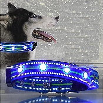 LKJYBG LED Dog Collar USB Rechargeable Water Resistant Light Up Dog Collars 3 Kinds of Glowing Mode Dog Light Nylon Webbing Collar Blue S