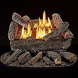 Bluegrass Living Vent Free Propane Gas Log Set - 18 Inch Traditional Oak, 30,000 BTU, Remote Control - Model# B18PR-UL1