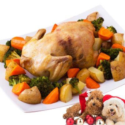 犬用クリスマス ごはん(プレミアム ローストチキン)無添加 手作りご飯【犬・クリスマスケーキ】