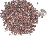 Paquete de semillas del árbol de Privet Europea, Ligustrum vulgare Semillas ideal para árboles Bonsai 10