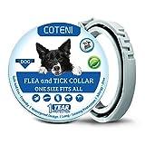COTENI Collier anti-puces et tiques pour chiens jusqu'à 1 an - Réglable et imperméable - 100 % naturel