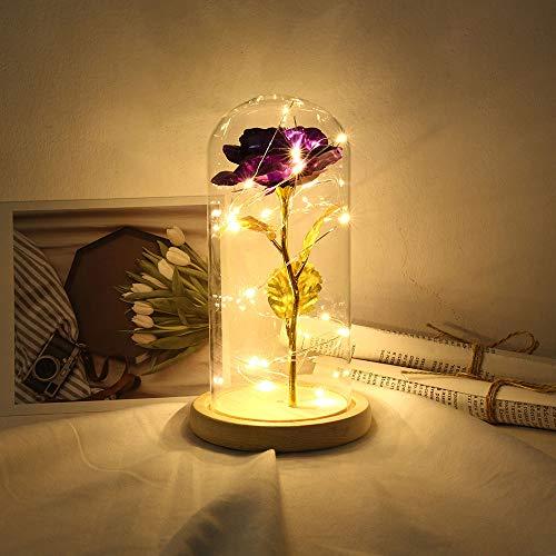 Fesjoy Ewige Rose, Romantisch Rose Blumen Die Schöne und das Biest Rose Kit Nachtlampe Party Hochzeit Dekor Valentinstag Hochzeitsgeschenk